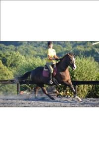 LHS fields an equestrian team? Yes!