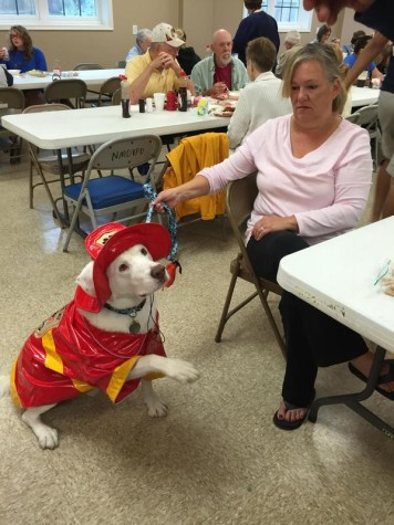 Louie visits all-you-can-eat breakfast:  Photo of the day 9/27/15