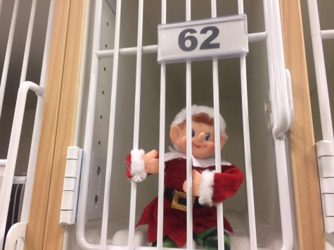 12/7/15: Where is Newsie the Elf hiding? Your chance to win gift cards this holiday season