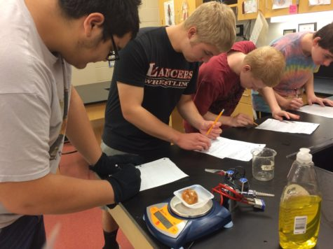 Riley's biology class learns about hypertonic, hypotonic and isotonic solutions: Photo of the Day 10/23/2016
