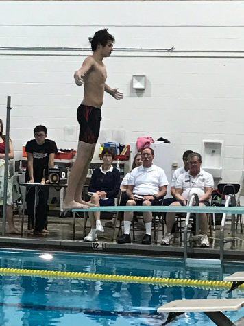 Small swim team has big goals:  Photo of the Day 1/9/2017