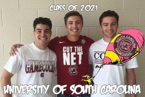 Oh, the places you'll go: Lohneis, Medve and Young ruffle their feathers for the University of South Carolina