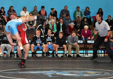 David Schultz takes fourth place at state wrestling tournament: Photo of the Day 3/11/2015