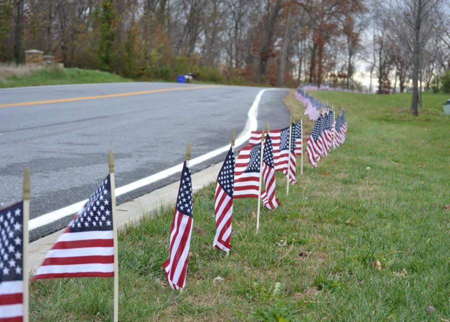 The SGA placed American flags along Old Annapolis Road to commemorate Veterans Day.