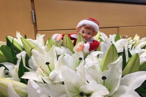 12/4/15 Where is Newsie the Elf Hiding?