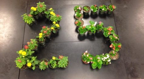 Future Farmers of America seniors celebrate 25 days left by creating the number 25 out of flowers.