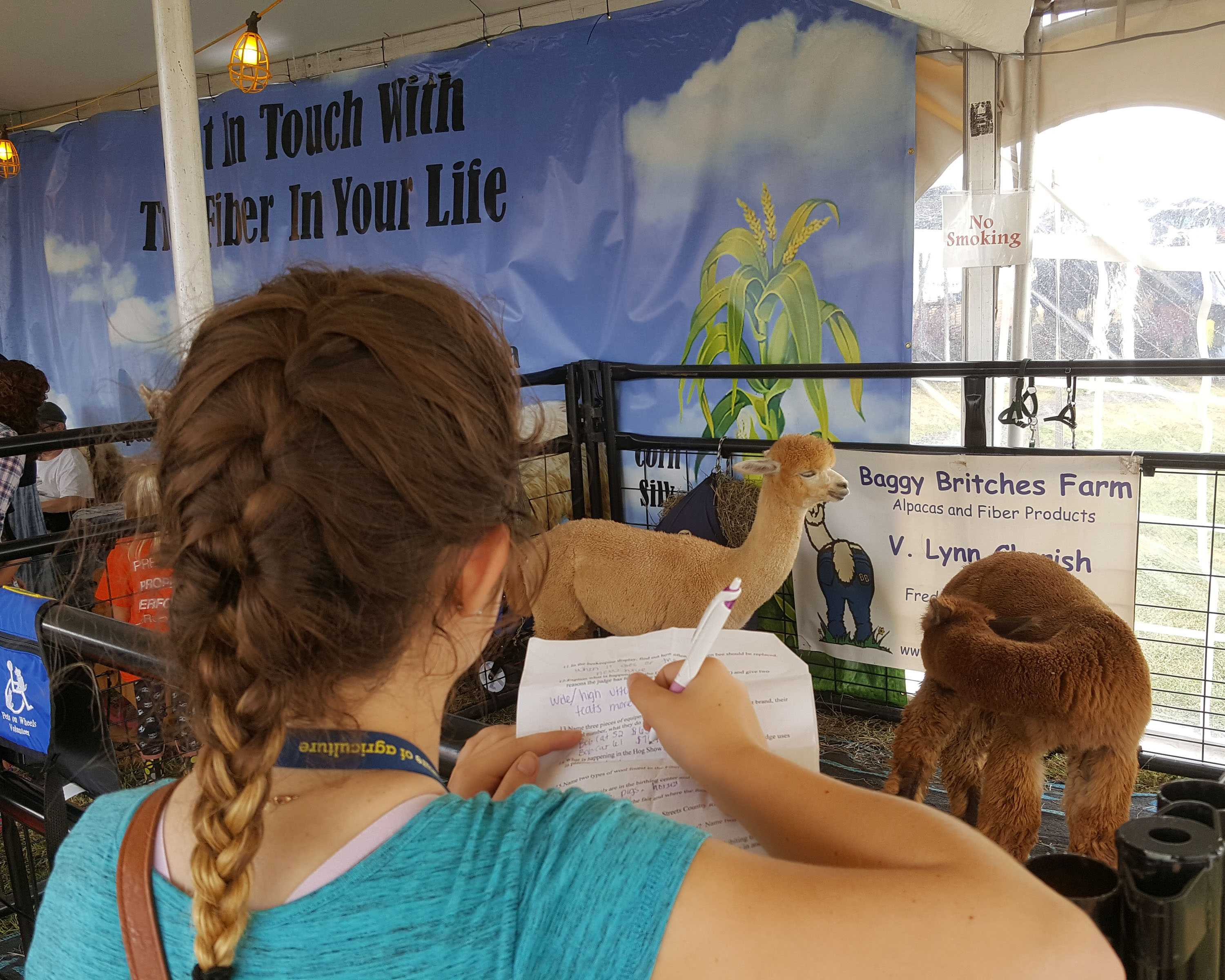 Class of 2017, senior Emily Sherwood is filling out a questionnaire asking her to name two types of wool found in the Fiber Optics tent.