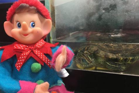 12/10/16: Where did Elfie take the selfie?