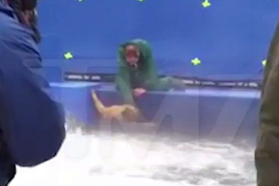 Still image from the TMZ video of German Shepherd Hercules being forced into a body of water on the set of the production of