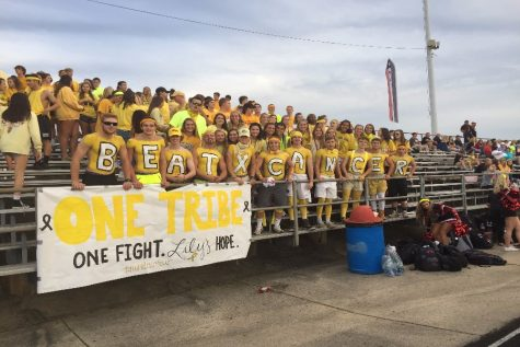 Yellow floods the student section: Photo of the Day 9/22/17