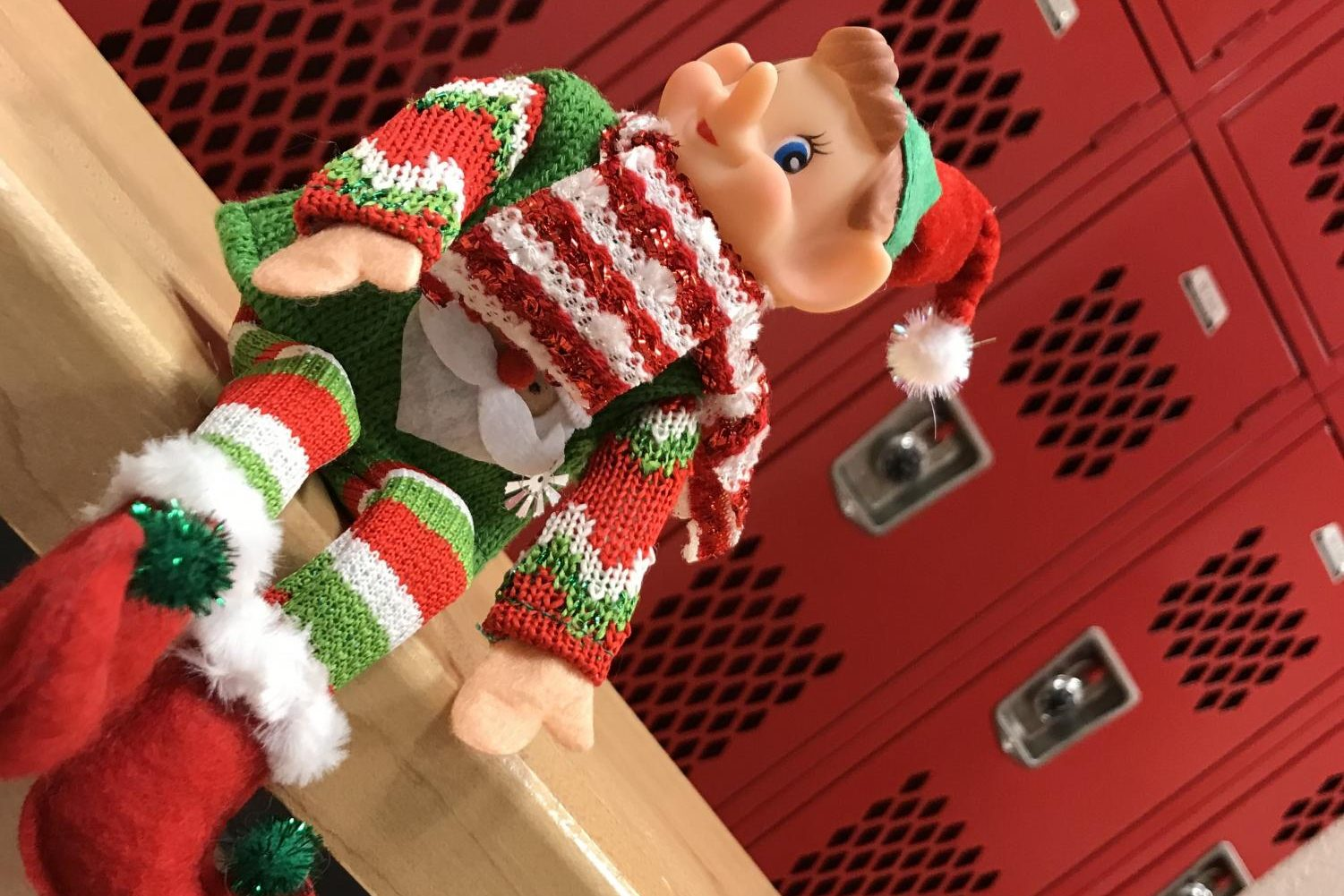Where is Elfie today?