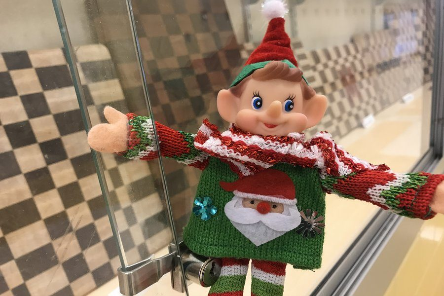Elfie is hiding somewhere you may pass every day.