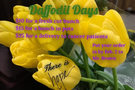 Join the fight against cancer–Key Club sponsors Daffodil Days: Photo of the Day 2/1/18