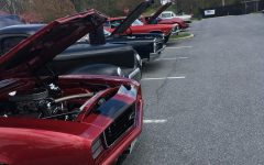 Cruisin for a Cause raises more than $1,000 for local charities