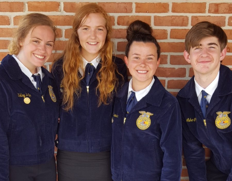 Kelsey+Wolfe%2C+Sarah+Gurley%2C+Luke+Chaney%2C+Tabitha+Reeder+took+second+place+in+Livestock+Evaluation.+%0A