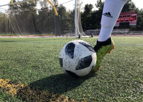 Are the dangers of artificial turf fields worth the risk?