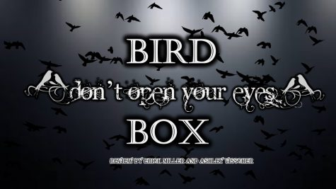 Bird Box – it's worth taking your blindfold off to see