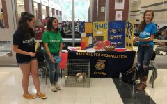 Drama, GSA, FFA: Club fair offers something for everybody: Photo of the Day 9/18/19