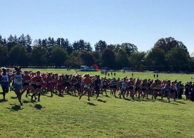 Female+varsity+runners+start+their+race.