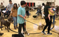 "A ""pawesome"" experience at the 46th Annual Community Show"