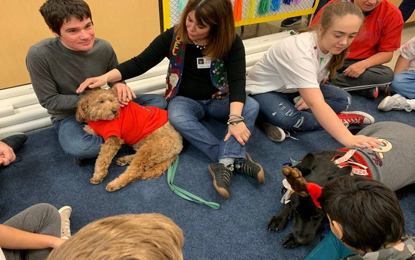 "Celebrating ""ugly sweater day,"" students play with GO TEAM therapy dogs."