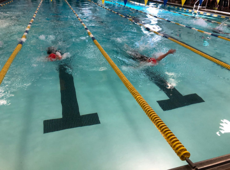 Girls dominate the pool, placing third in the county: Photo Of The Day 2/18/20