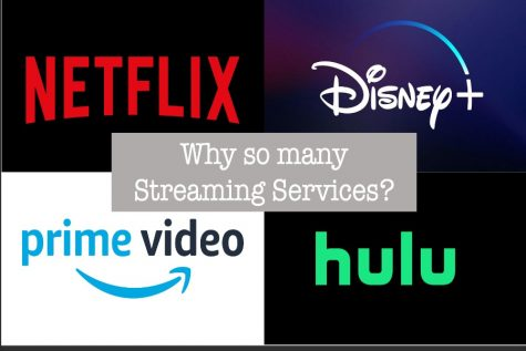 Neftflix, Disney Plus, Amazon Video, and Hulu are some of the most popular streaming services out there. Yet, there are still so many other options.
