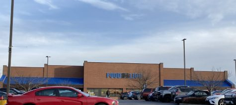 Food Lion's roaring new changes excite shoppers