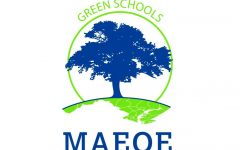 Green with envy: Why isn't LHS a Green School?
