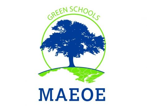 Green with envy: Why isnt LHS a Green School?